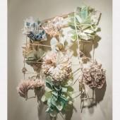 Form From Nature Installation, Turman Larison Gallery, Helena, MT